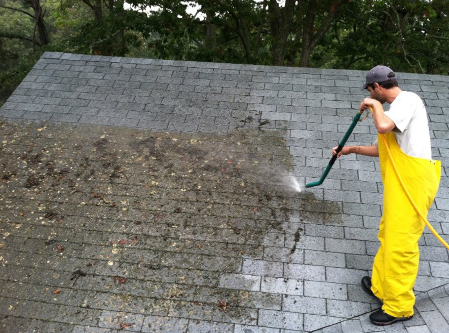 roof cleaning New Port Richey